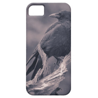 The watching Crow iPhone 5 Covers