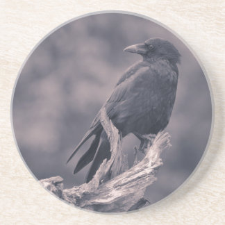 The watching Crow Drink Coaster