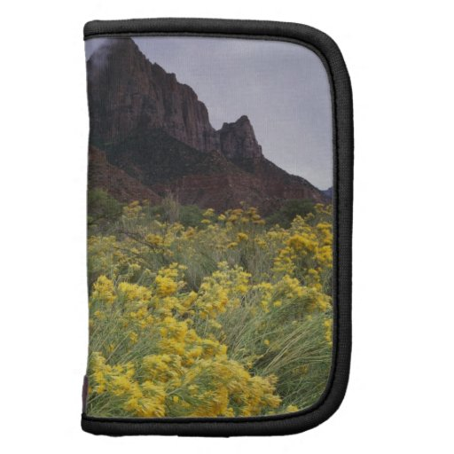 The Watchman formation and blooming rabbitbrush Organizers