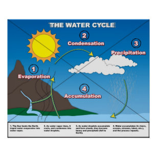 The water cycle posters photo prints zazzle the water cycle poster ccuart Gallery