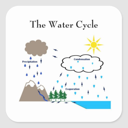 The water cycle sticker
