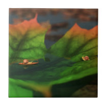 The Water Is Wide Decorative Tile / Trivet