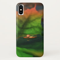 The Water Is Wide iPhone Case