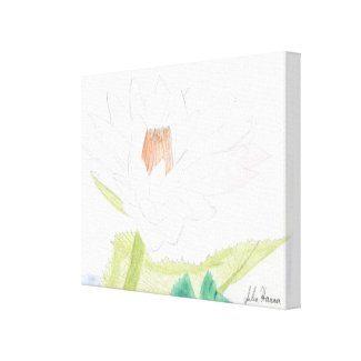 The Water Lilly Drawing by Julia Hanna