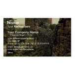 The water tower, Chester, England classic Photochr Business Card Template