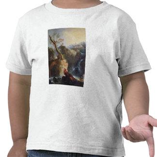 The Waterfall, 1773 T Shirt