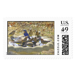 The Watering Hole Stamp