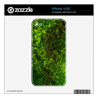 The Water's Forest Phone Skin Decals For iPhone 4