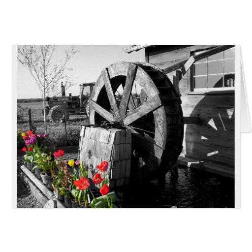The Waterwheel Card