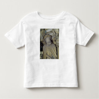 The Well of Moses Toddler T-shirt