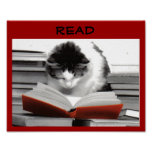 The Well-Read Cat Literacy Poster