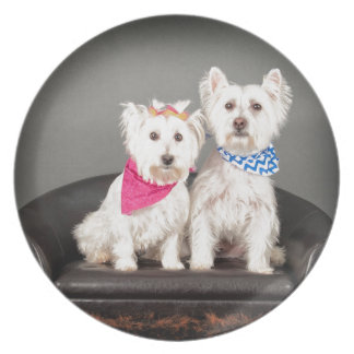 The Westie couple Plate