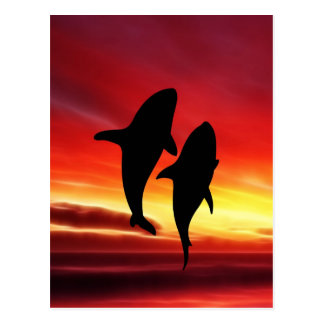 The whales dance at sunset postcard