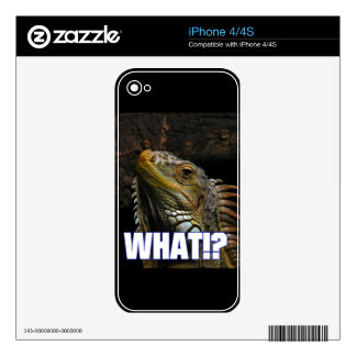 The What!? Iguana Decals For The iPhone 4S