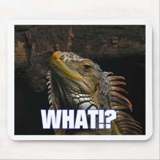 The What!? Iguana Mouse Pad