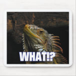 The What!? Iguana Mousepads