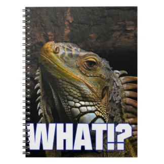 The What!? Iguana Note Books