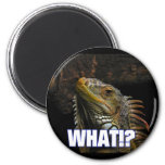 The What!? Iguana Refrigerator Magnets