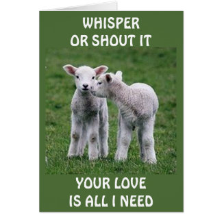 THE WHISPER OF LOVE=LAMB COUPLE CARD