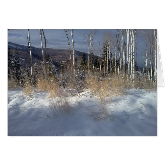The White Birches at Deer Valley Card