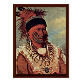 The White Cloud Head Chief Of The Iowa Postcard
