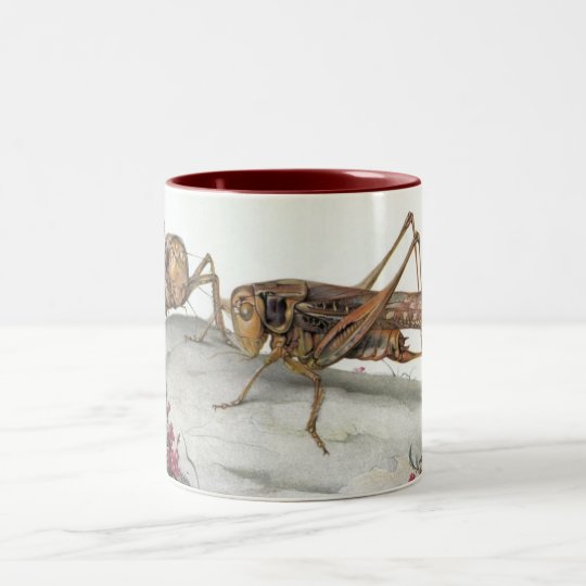 THE WHITE-FACED DECTICUS Two-Tone COFFEE MUG