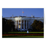 The White House Cards