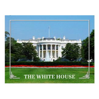 The White House, Washington, D.C. Postcard