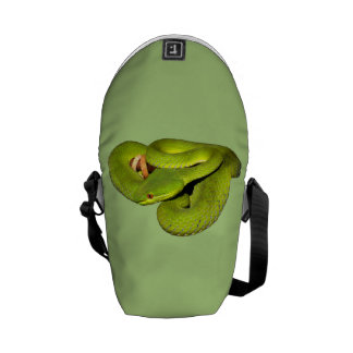 The white-lipped pit viper courier bag