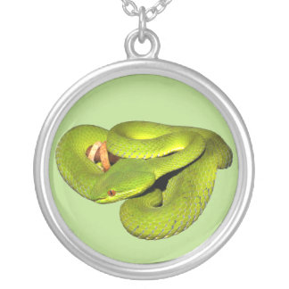 The white-lipped pit viper silver plated necklace