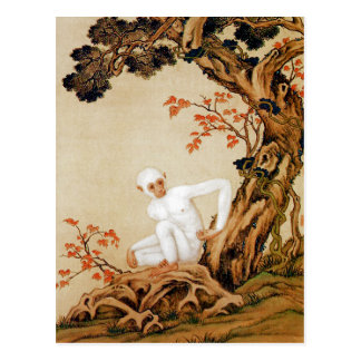 The White Monkey Postcard