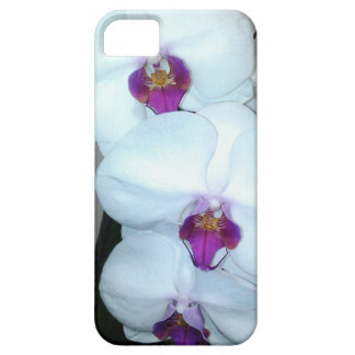 THE WHITE ORCHID phone case