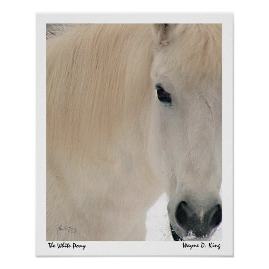 The White Pony Poster