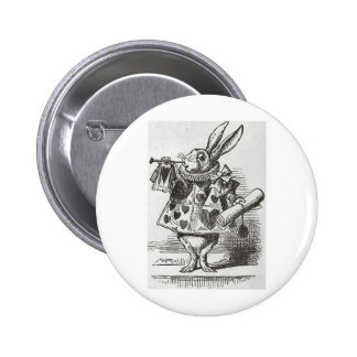 The White Rabbit from Alice in Wonderland Pins