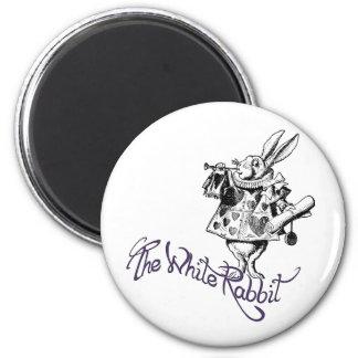 The White Rabbit Fridge Magnets