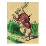 The White Rabbit Postcard