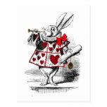 The White Rabbit Postcards