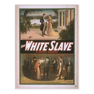 The White Slave Postcard