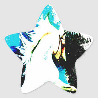 The White Stallion Abstracted Star Sticker