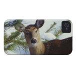The White-tailed deer (Odocoileus virginianus), iPhone 4 Case
