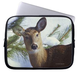The White-tailed deer (Odocoileus virginianus), Laptop Sleeve