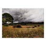 The wide brown land for me print