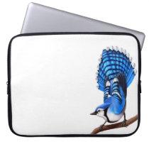 The Wild Blue Jay Bird Electronics Bag