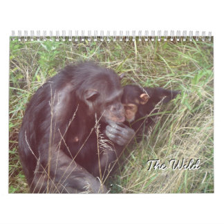 """The Wild"" Calendar"
