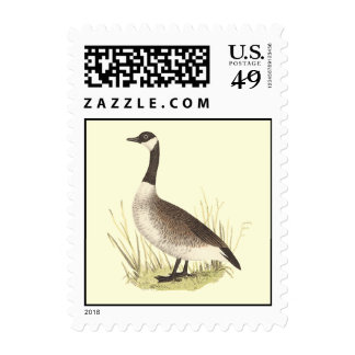 The Wild Goose(Anser canadensis) Postage Stamps