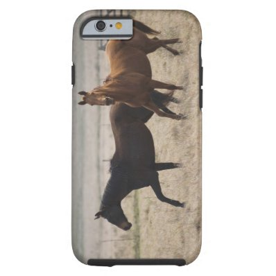 The wild horse  Equus ferus  is a species of the Tough iPhone 6 Case
