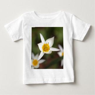 The wild tulip Tulipa turkestanica Baby T-Shirt