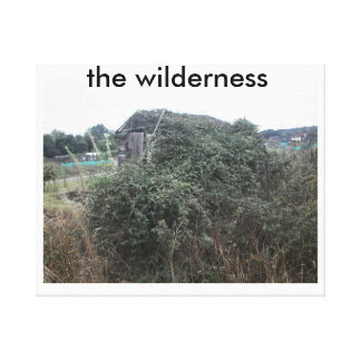 the wilderness canvas