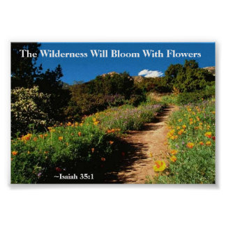 The Wilderness Shall Bloom Isaiah 35:1 Poster