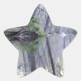 The wilderness star sticker